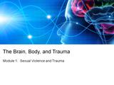 The brain body and trauma.