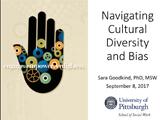 Navigating Cultural Diversity and Bias